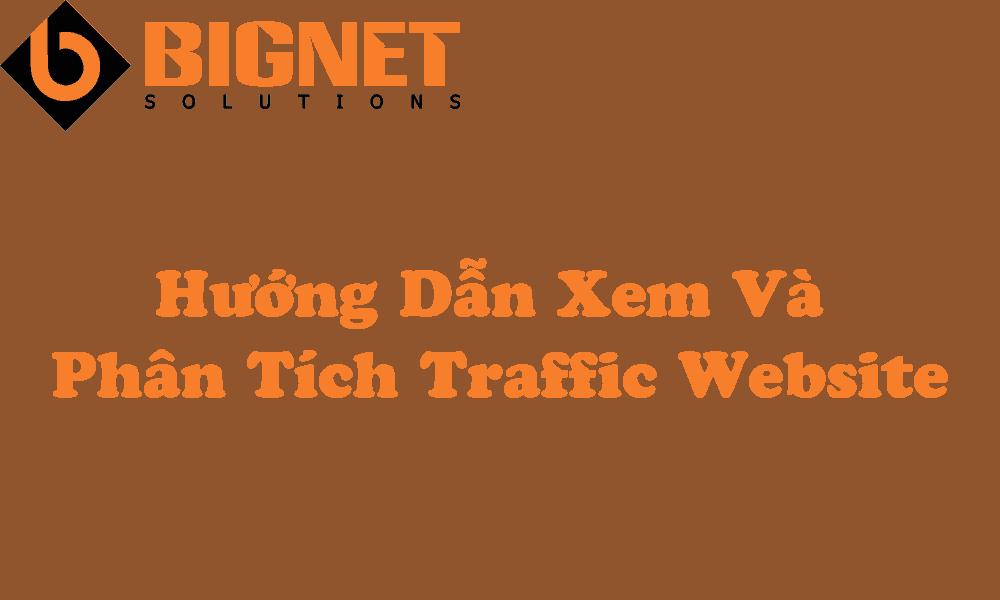 Hướng Dẫn Xem Và Phân Tích Traffic Website